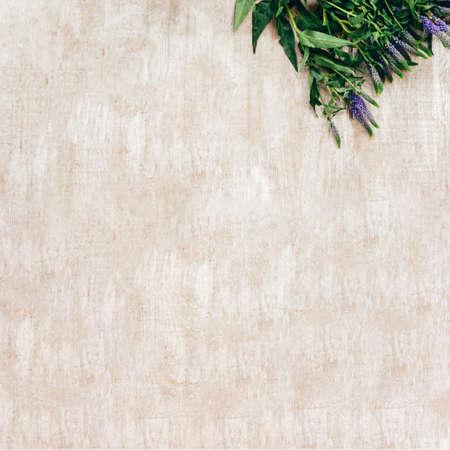 Floral background. Natural flower decor. Blue green bouquet on beige textured surface.