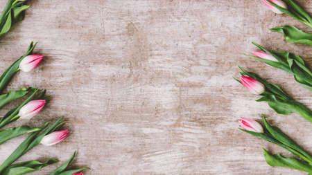 Floral background. Creative flower arrangement. Pink white tulips on beige wooden textured surface.