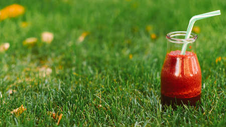 Healthy nutrition. Natural drink. Fresh red berries smoothie in bottle on green grass.