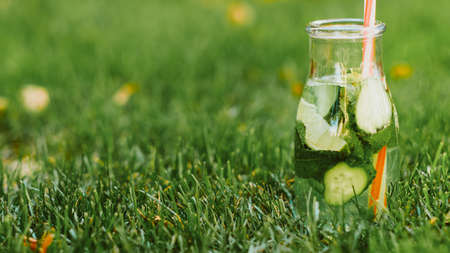 Healthy diet. Organic detox drink. Fresh cucumber lime mint water in bottle on green grass. Stock Photo