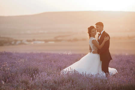 Wedding couple in a lavender field at sunset, bride and groom