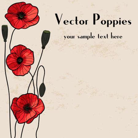 corn poppy: Poppies frame. Grunge background.  Illustration