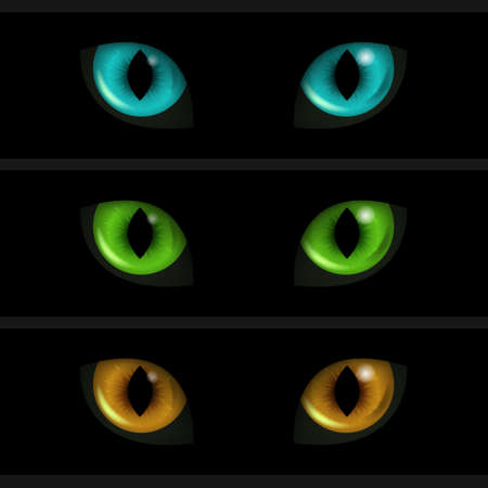 cat: Cat Eyes on black background. Set of three elements. Vector illustration.