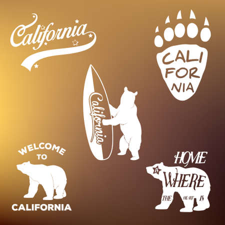 hollywood star: Vintage california republic t-shirt apparel fashion design and bear, vector illustration Illustration