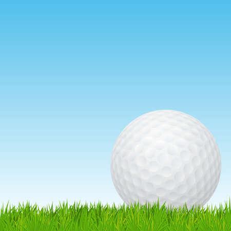 golf  ball: Pelota de golf en una hierba verde.