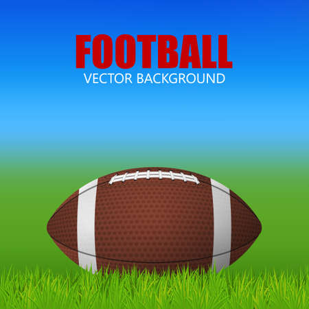 rugger: Football ball on a grass field. Vector EPS10 illustration. Illustration
