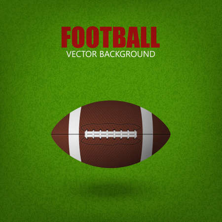 rugger: Football ball on a grass field. Vector illustration.