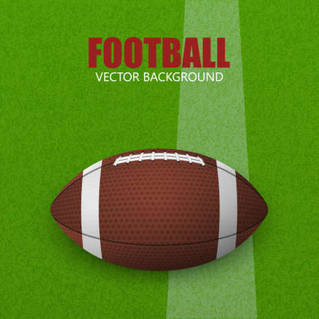 rugger: Football on a grass field. Vector illustration. Football on a grass fieldFootball ball on a grass field. Vector illustration. Illustration