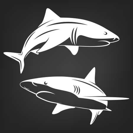 menace: Monochrome illustration of stylized two sharks isolated on white.