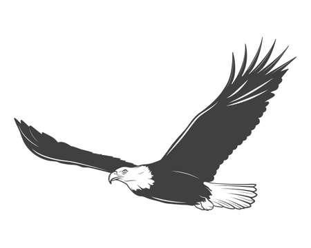halcones: �guila monocrom�tica sobre un fondo blanco. Ilustraci�n del vector.