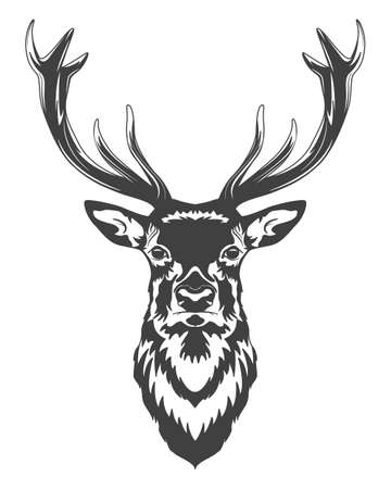 Monochrome deer head isolated on white background. Vector   illustration.