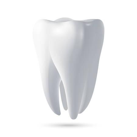 dientes sanos: Diente, render 3D. Dental, medicina y salud concepto elemento de diseño. ilustración vectorial EPS10. Vectores