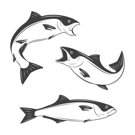 big game fishing: Set of monochrome fish.  Illustration