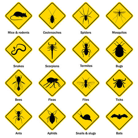 insect control: Pest and insect control icons set. Vector EPS8 illustration.