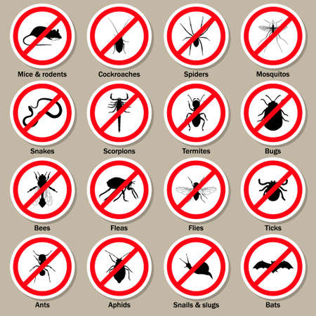 insect control: Pest and insect control icons set. Vector EPS10 illustration.