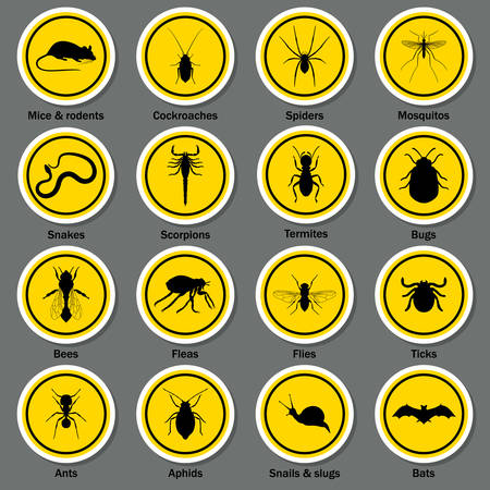 Pest and insect control icons set. Vector EPS10 illustration.