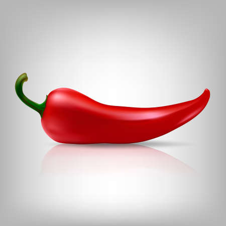 chilli pepper: Realistic red chilli pepper isolated on white background.