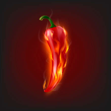 chilli pepper: Background with burning chilli pepper.