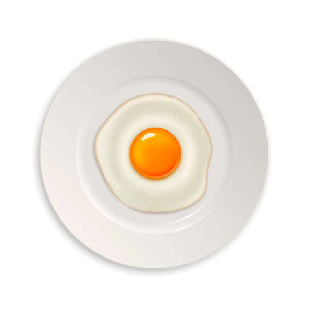 side dish: Realistic vector fried egg icon on a plate. Design template. Illustration