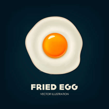 fried egg: Vector background with beautiful realistic fried egg.
