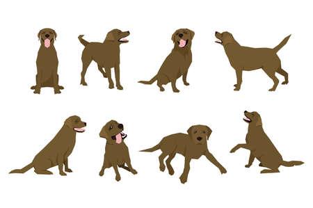 Tier Hund Labrador Charakter Icon-Set in flachen Stil. Designvorlage. Standard-Bild - 80180846