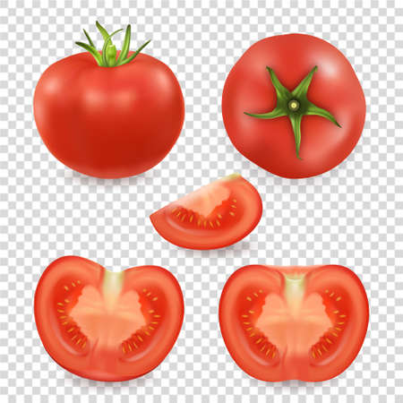 A Vector 3d realistic different tomato icon set closeup isolated on transparency grid background.