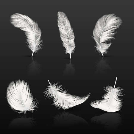 Vector 3d Realistic Different Falling White Fluffy Twirled Feather Set Closeup Isolated on Dark Background. Design Template, Clipart of Angel or Bird Detailed Feather in Various Shapes.