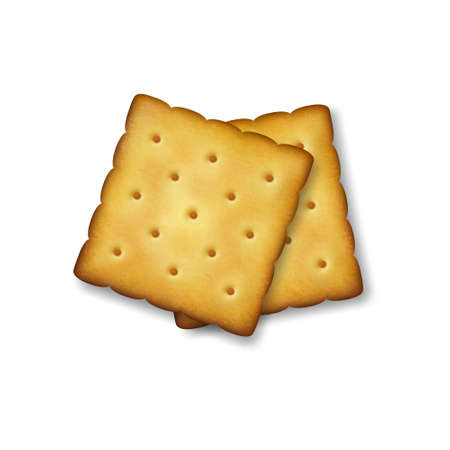 Realistic Vector 3d Square Delicious Salty Cookies Rustic, Cracker, Biscuit Set Closeup Isolated on Transparent Background. Design Template of Sweet Cookie, Yummy Crackers, Breakfast Snack.