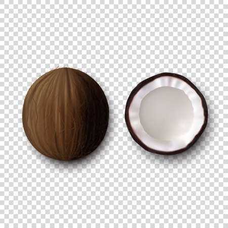 3d Realistic Whole and Halves Coconut Icon Set Closeup Isolated on Transparent Background. Design Template of Coconut with Half in Top View