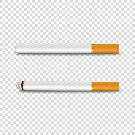 Vector 3d Realistic Clear Blank Whole and Lit Cigarette Icon Set Closeup Isolated on Transparent Background. Design Template. Smoke Problem Concept, Tobacco, Cigarette Mockup. Front, Top, Side View