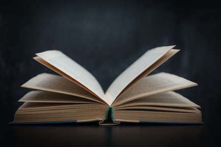 Open book on the table on a dark background Stockfoto