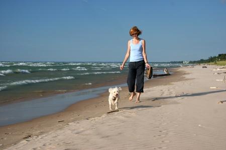 femme et chien: Femme et petit chien marcher sur la plage - Parc Provincial Pinery, lac Huron, Ontario Banque d'images