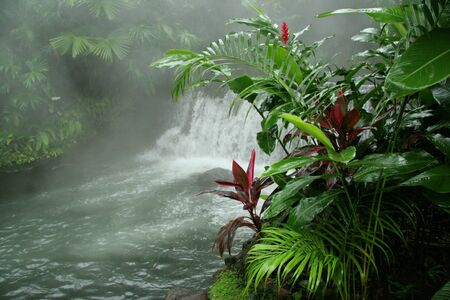 Arenal Hot Springs - Costa Rica Stock Photo - 10510015