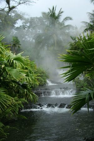 Arenal Hot Springs - Costa Rica Stock Photo - 10510014