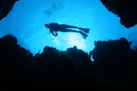 Silhouette of Scuba Diver  Over a Coral Reef - Cozumel Mexico photo