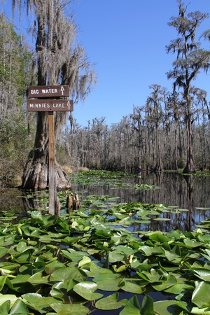 Destination Signs on the Suwannee River - Okefenokee Swamp Wildlife Refuge, Georgia Stock Photo - 12963738