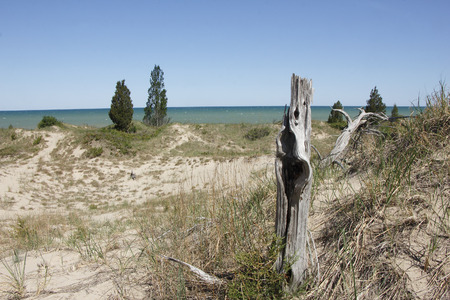 pinery: Sparsely Vegetated Sand Dune Overlooking Lake Huron - Pinery Provincial Park, ON, Canada