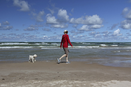 small white dog: Woman Walking on a Lake Huron Beach with a Small White Dog - Grand Bend, Ontario, Canada Stock Photo
