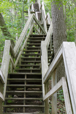 middlesex: Stairway Ascending a Ravine in a Deciduous Forest - Rock Glen Conservation Area, Ontario, Canada