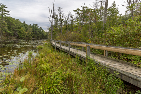 pinery: Wooden Boardwalk Next to a Slow Meandering River Channel in Late Summer - Pinery Provincial Park, Ontario, Canada