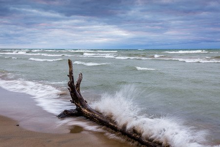 pinery: Waves Crashing Against Driftwood on a Lake Huron beach - Pinery Provincial Park, Ontario, Canada
