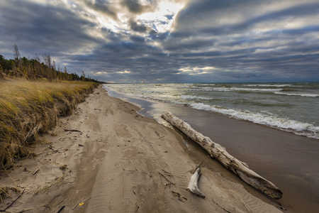 pinery: Autumn storm clouds form over driftwood on a Lake Huron beach - Pinery Provincial Park, Ontario, Canada