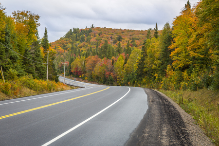 provincial forest parks: Winding Road Through a Forest of Fall Color - Algonquin Provincial Park, Ontario, Canada Stock Photo