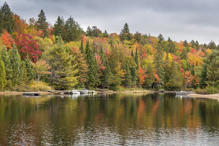 provincial forest parks: Fall colors reflecting on a lake in autumn with motorboats docked next to shore - Algonquin Provincial Park, Ontario, Canada