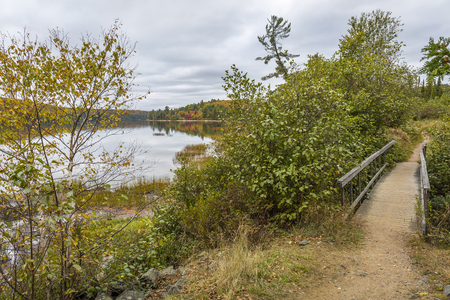 boardwalk trail: Trail with a Boardwalk Next to a Lake in Autumn - Algonquin Provincial Park, Ontario, Canada Stock Photo