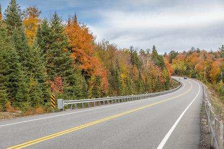 feuille arbre: Conduire sur une route sinueuse Entour� de couleur d'automne - le parc provincial Algonquin, Ontario, Canada