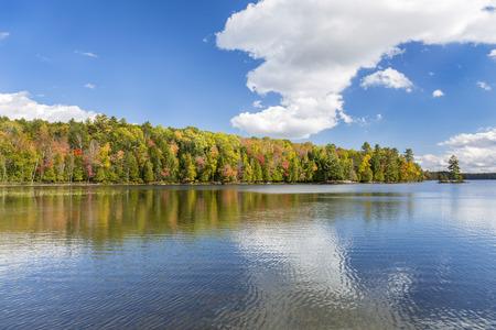 muskoka: Vibrant Fall Colors Reflecting off a Lake in Autumn - Silent Lake Provincial Park, Ontario, Canada