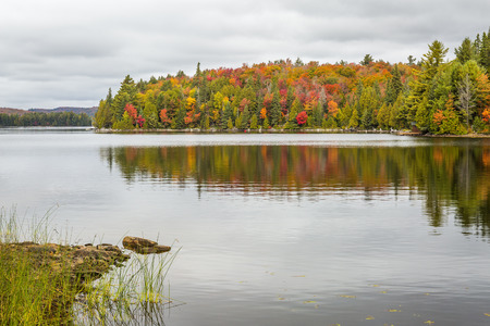 provincial forest parks: Lake in Autumn with Colorful Sugar Maples Lining the Shore - Algonquin Provincial Park, Ontario, Canada Stock Photo