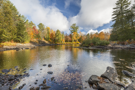 provincial forest parks: Oxtongue River in autumn with vibrant fall colors reflecting on its surface - Ontario, Canada