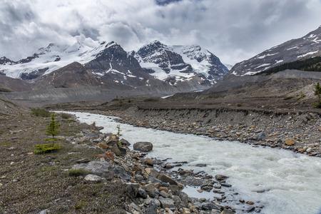 Río de Athabasca que fluye a través de las Montañas Rocosas - Parque Nacional Jasper, Alberta, Canadá Foto de archivo